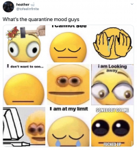 This image references the various moods were are feeling in quartine