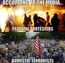 "Image comparing the media's two viewpoints of ""peaceful protests"" and ""domestic terrorists"""