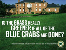 Is the Grass Greener Without Blue Crabs?